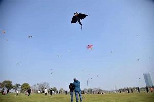 注意!暂时不能去大龙湖草坪上放风筝了!