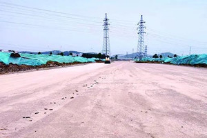 北接台儿庄,南连徐州方特,这条旅游黄金大道建设正稳步推进
